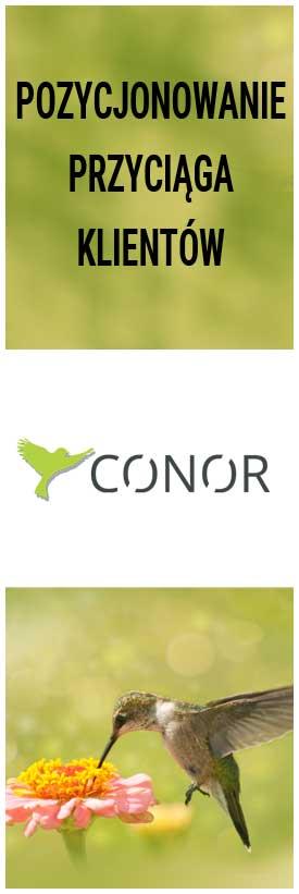 Conor.pl Strony www